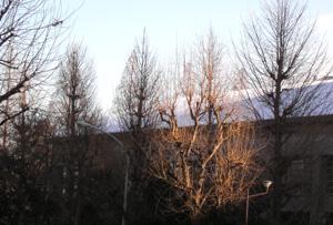 060127_snowy_mountain.JPG