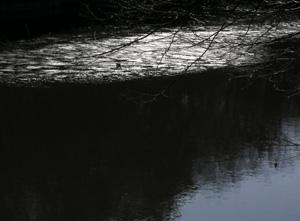 060313_floating_ice.JPG