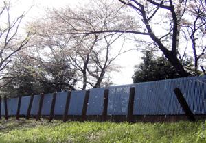 060406_last_spring.JPG