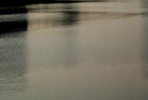 060526_silent_ripples.JPG