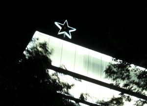 060530_bright_star.JPG