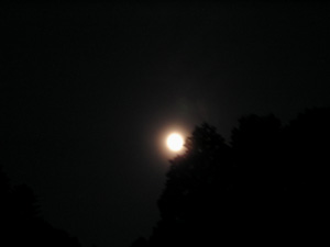 060614_moon.JPG