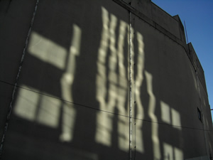 061008_sunlight.jpg