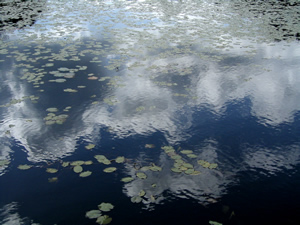 061022_floating_clouds.jpg