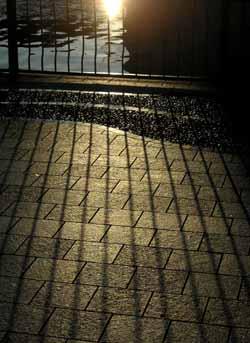 061105_long_shadow.jpg