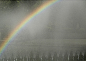 061107_rainbow.jpg