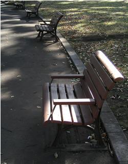 061108_benches.jpg
