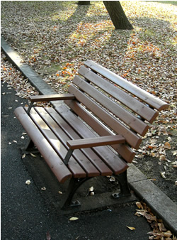 061203_autumn_bench.jpg