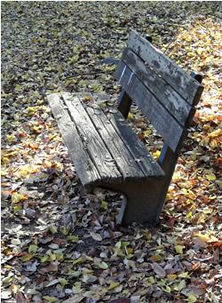 061216_bench.jpg