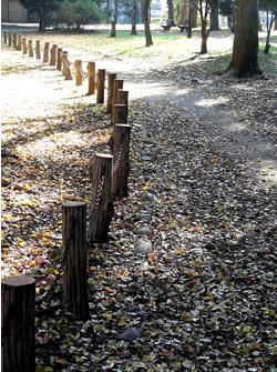 061219_autumn_path.jpg