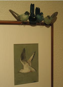 070106_resting_birds.jpg