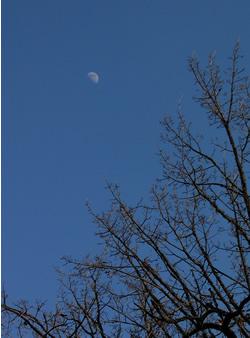 070127_daytime_moon.jpg