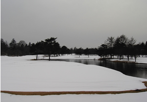 070213_golf_course.jpg