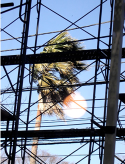 070215_strong_wind.jpg