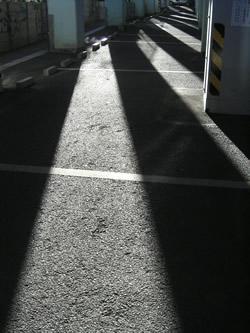 070310_sunlight_mischief.jpg