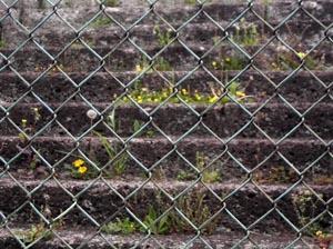 070424_stone_steps.JPG