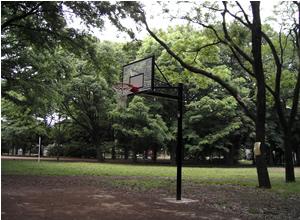 070527_basket.jpg