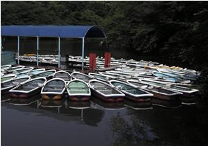 070621_boats.jpg