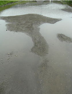 070624_big_puddles.jpg