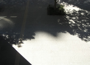 070812_sunlight_artwork.jpg