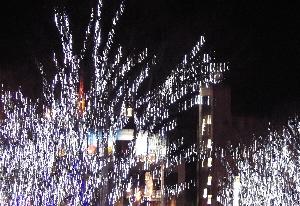 071209_christmas.jpg