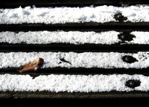 080117_snowy_morning.jpg