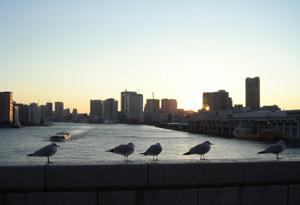 080124_sunset_river.jpg