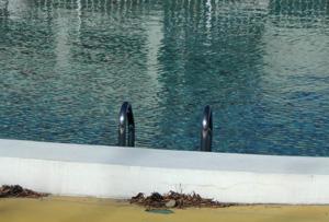 080129_swimming_pool.jpg