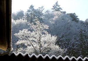 080210_night_snow.jpg