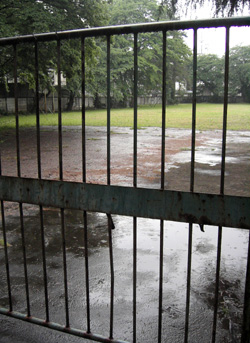 080510_rainy_ground.jpg