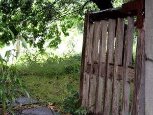 080513_secret_garden.jpg