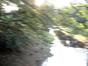 080725_river.jpg