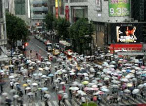 080817_crosswalk.jpg