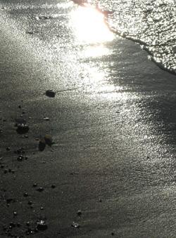 080904_beach.jpg