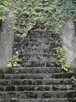 080911_stone_steps.jpg