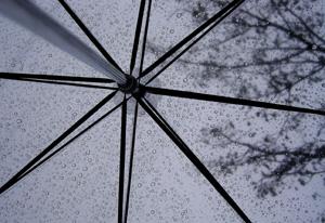 080921_umbrella.jpg