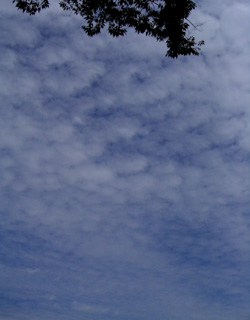 080924_autumn_clouds.jpg