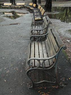 081108_rainy_park.jpg