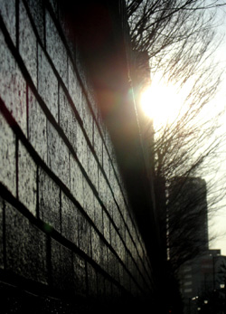 090118_wall.jpg