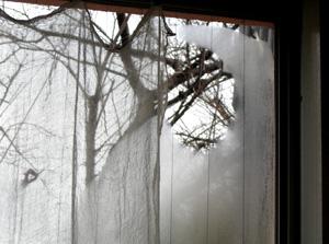 090228_window.jpg