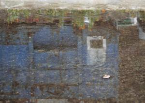 090314_puddle.jpg
