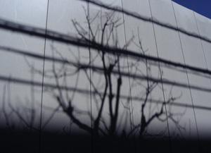 090315_shadow_a.jpg
