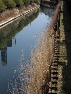 090321_river.jpg