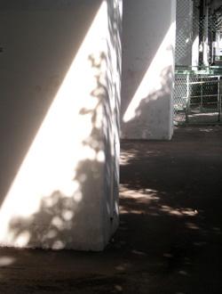 090904_shadow.jpg