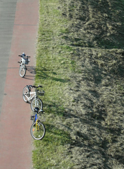 090920_bicycles.jpg