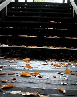 091115_steps.jpg