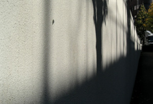 091222_long_shadow.jpg