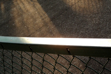100117_fence.jpg