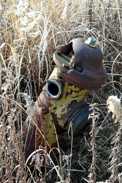 100129_fire-hydrant.jpg