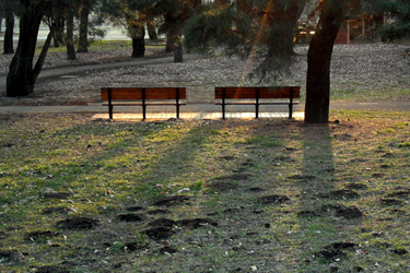 100220_benches.jpg